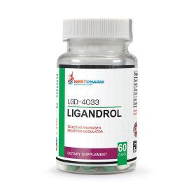 WestPharm - WestPharm Ligandrol LGD-4033 10 мг 60 капс. - Арт. 001684 - Товар из Интернет-магазина ВКУС победы - магазин спортивного питания = 4250 РУБ.